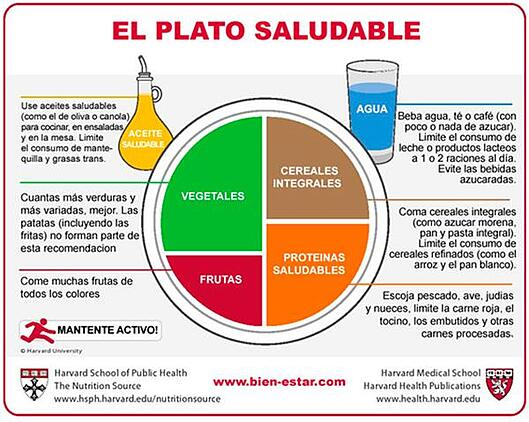 Plato-saludable-de-Harvard-indoamericano