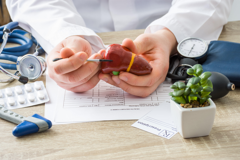 preparatoria-tlalnepantla-indo-programa-pre-medico